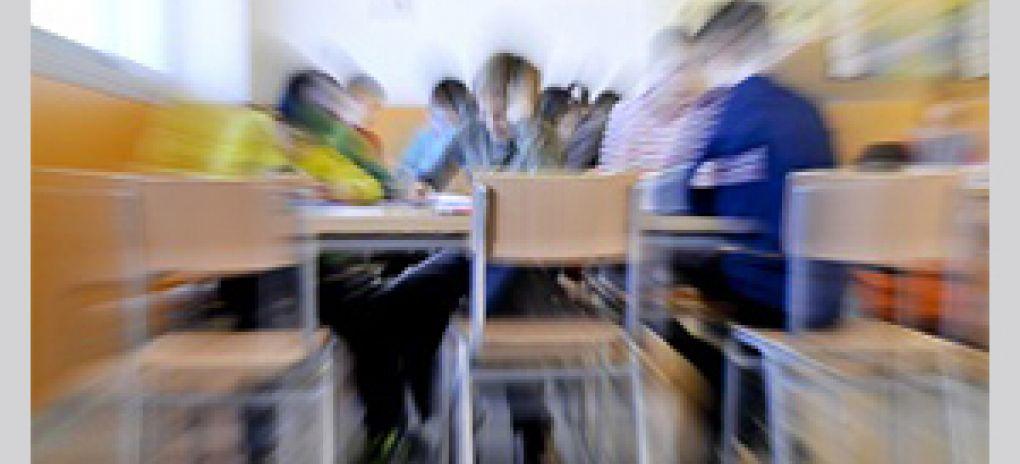 Les escoles magnet: poden les aliances amb institucions millorar l'excel·lència...