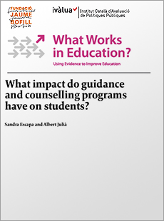 What impact do guidance and counselling programs have on students?