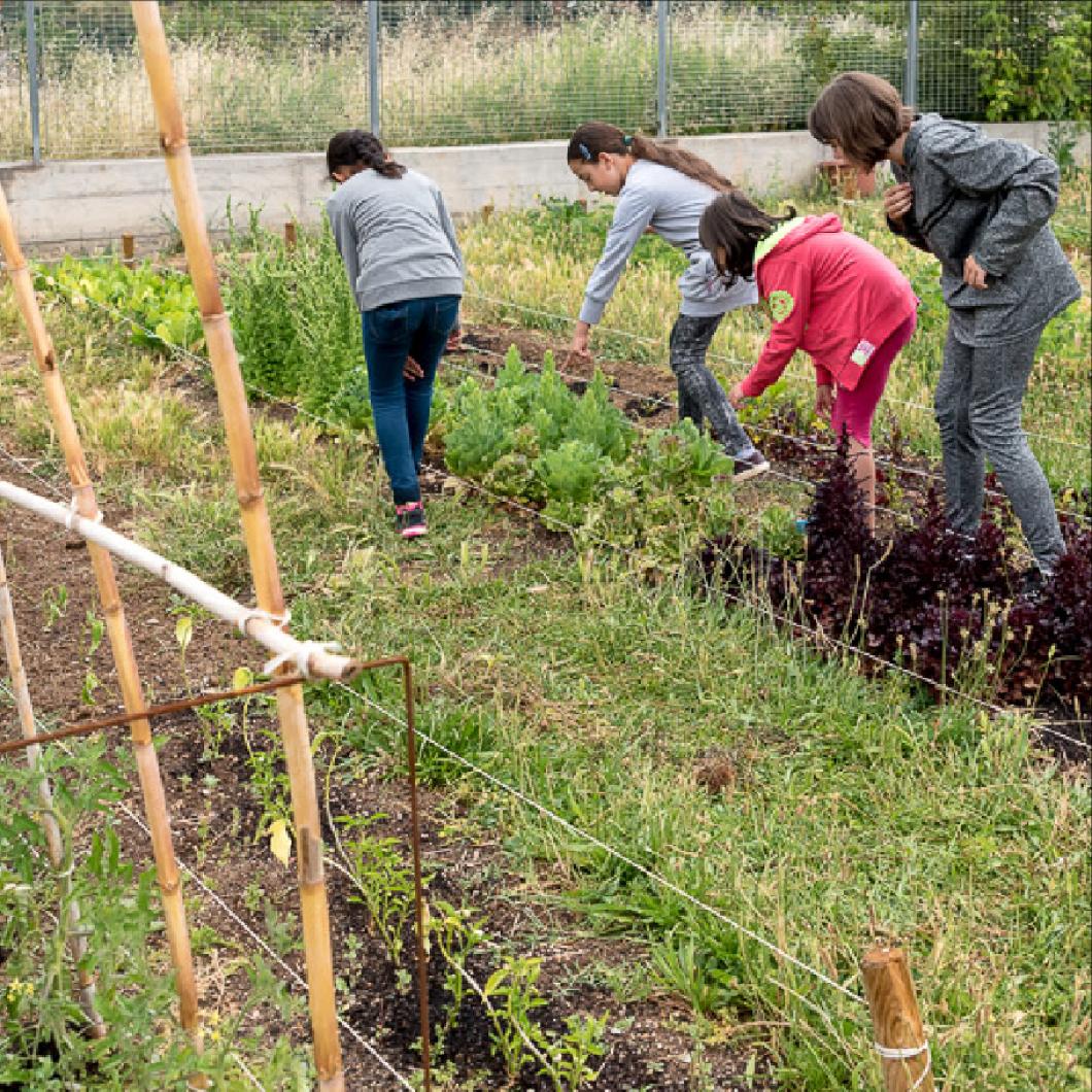 I si connectem espais i temps educatius per generar més i millors oportunitats d'aprenentatge pel nostre alumnat?