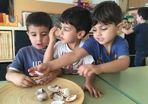 'El dia a dia d'un centre segregat' – Sergi Picazo