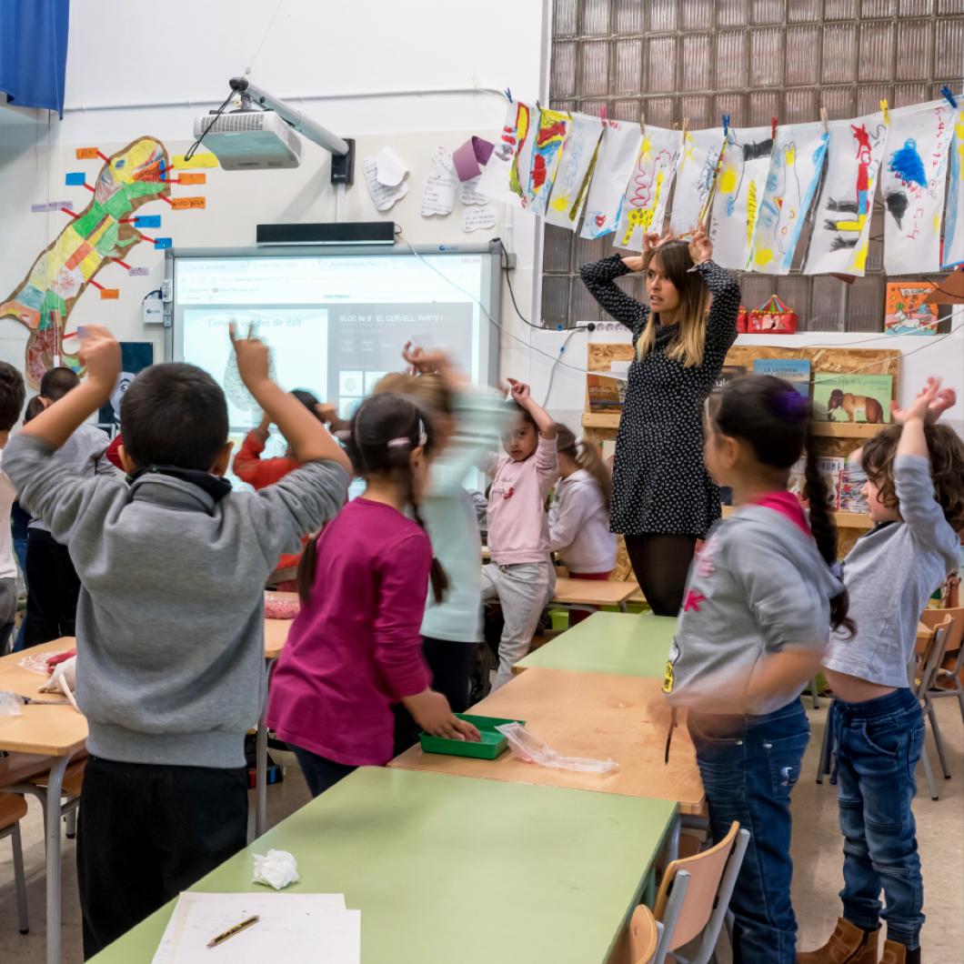Aquest projecte ofereix recursos i materials de qualitat que aportin conceptes, reflexions, i perspectives al professorat per comprendre i gestionar la diversitat sociocultural present a l'aula.