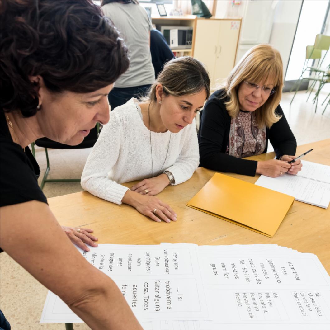Enquesta realitzada a 1.500 AMPA a Catalunya i 1.400 directors d'escola en el marc del projecte