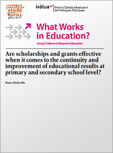 Are scholarships and grants effective when it comes to the continuity and improvement of educational results at primary and secondary school level?